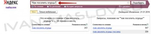 Сео оптимизация WordPress